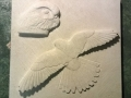 Carving of a Kestrel in Portland limestone.