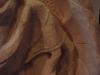 close up of torso