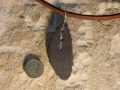 Welsh slate leaf pendant with sterling silver stitching and choker length thong.